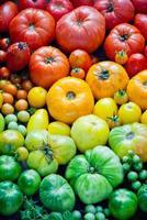 tomates orgânicos frescos foto