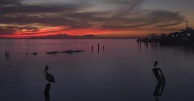 nascer do sol sobre a baía de galveston foto