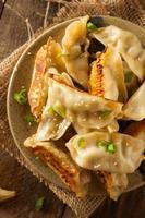 potstickers de carne de porco asiáticos caseiros