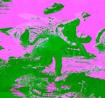 ataque de crocodilo foto
