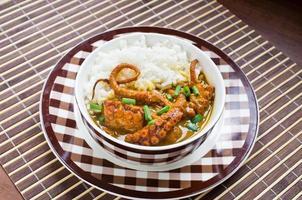 caril de polvo com arroz e cebolinha