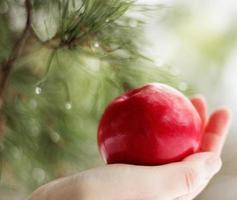 maçã na palma da mão