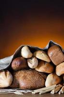 variedade de pão