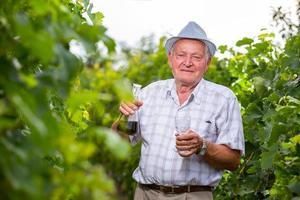 viticultor sênior