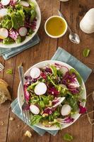 salada de ervas caseira saudável foto