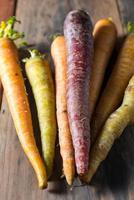 várias cenouras orgânicas coloridas vegetais foto