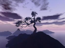 árvore solitária foto