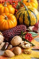 composição de outono foto
