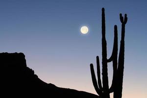 montanha, cacto e lua