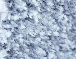 padrão de geada do inverno foto