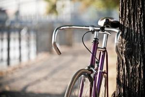 uma bicicleta roxa encostada a uma árvore