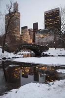 central park em nova york foto