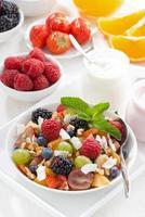 salada de frutas em uma tigela e vários iogurtes, vista superior