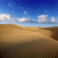 dunas de areia do deserto em maspalomas gran canaria