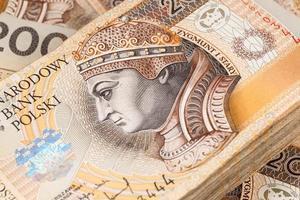zloty polonês dinheiro