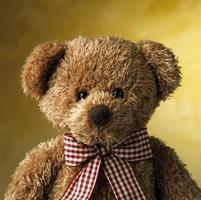 urso de brinquedo foto