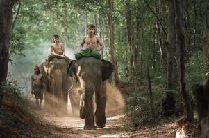 Cornaca pastor elefante na floresta