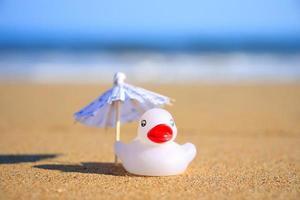 guarda-sol branco e pato foto