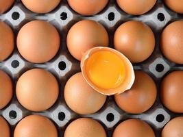 ovo em caixa de papelão foto