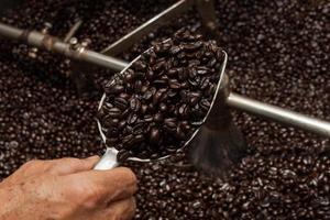 grãos de café recém torrados em uma torrefadora de café foto