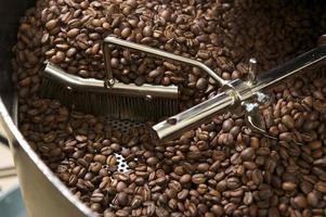 grãos de café em um torrador