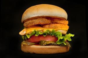 hambúrguer final foto