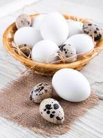 codorna e ovos de galinha foto