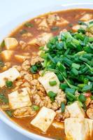 tofu mabo ou mapo doufu o prato chinês foto