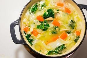 sopa de macarrão de galinha no forno holandês foto