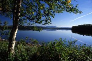 lago como um espelho foto