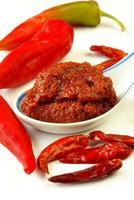 pasta de curry vermelho