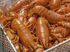 assar lagosta foto