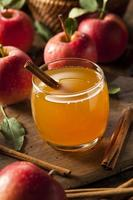 cidra de maçã orgânica com canela foto