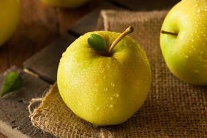 maçãs orgânicas deliciosas douradas cruas foto
