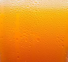 bolha de cerveja