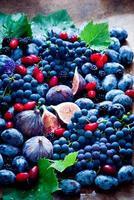 figos frescos, uvas, ameixas, dogwood e amora preta