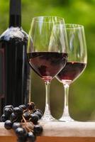 garrafa de dois copos de vinho e cacho de uvas