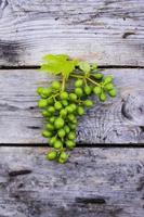 uvas verdes foto