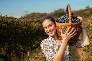 cesta de transporte feminina cheia de uvas foto