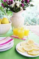 cenário de mesa com coquetéis de suco de limão no jardim foto