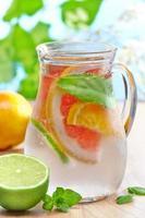 bebida fria de frutas cítricas