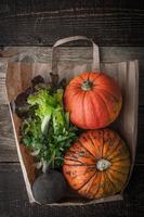 abóboras e legumes dentro de um saco de papel vertical foto