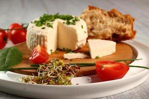 queijo e vegetais. série de aperitivos. foto