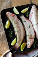 peixe fresco com limão e alecrim foto