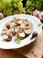 caracóis com manteiga de alho foto