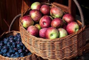 cestas de frutas foto