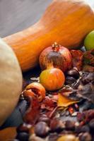 fundo de quadro outono foto
