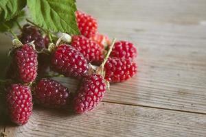 vintage recente de framboesas vermelhas frescas foto