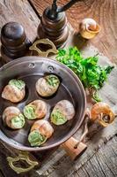 caracóis frescos com manteiga de alho foto