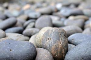 jardim de pedras foto